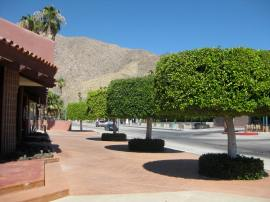 Palm Springs, 108ºF. JPG